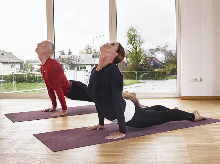 Iyengar Yoga Iyengar Yoga West